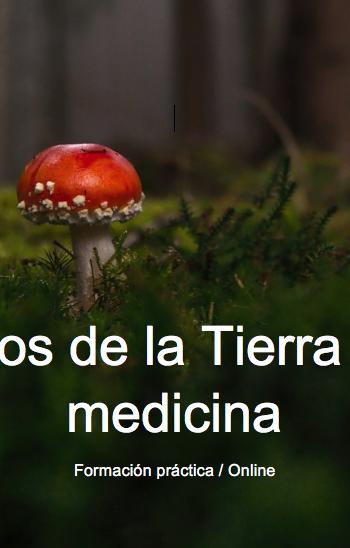 Sonidos de la Tierra como medicina  – Pago fraccionado