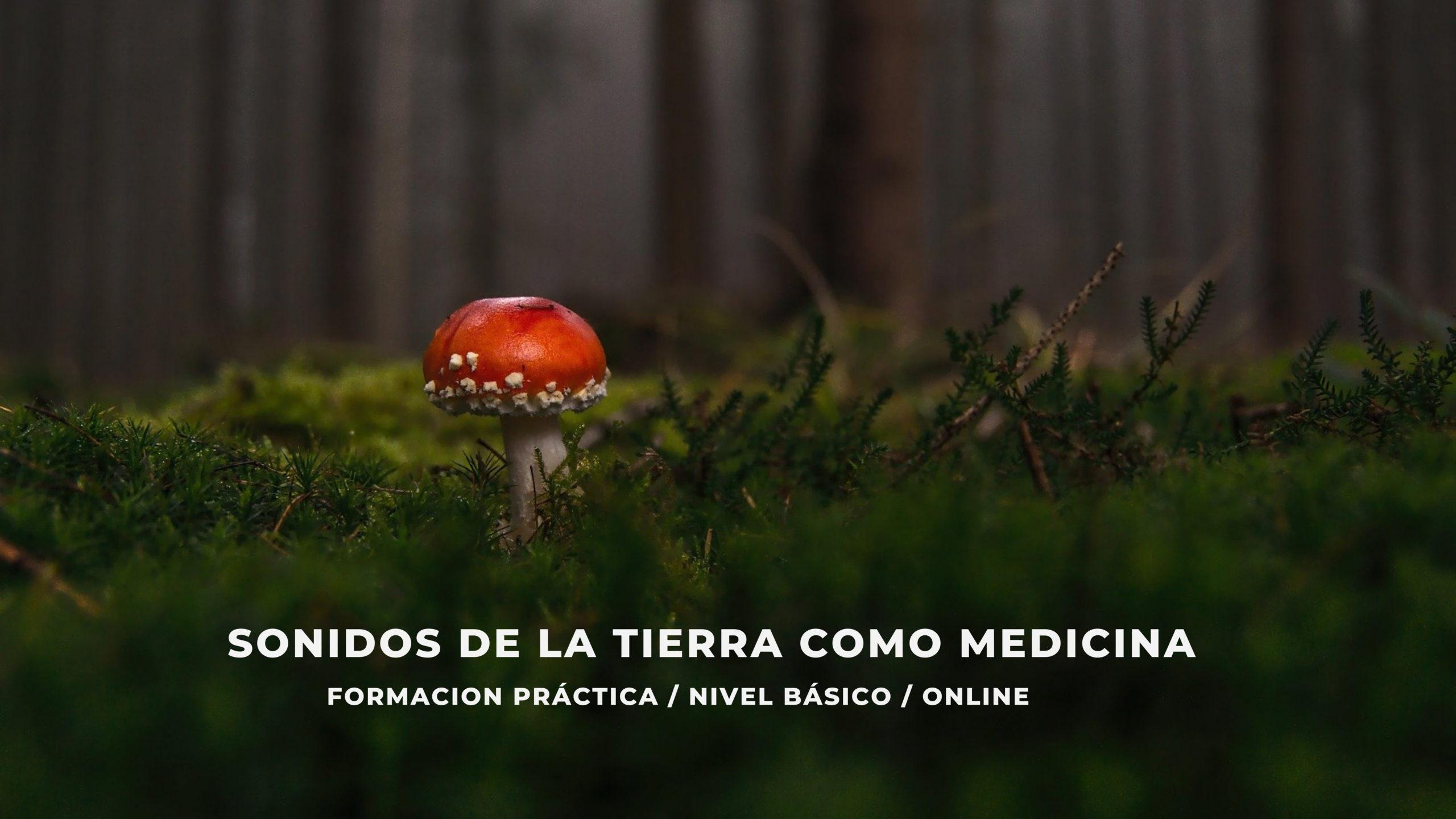 sonido medicina