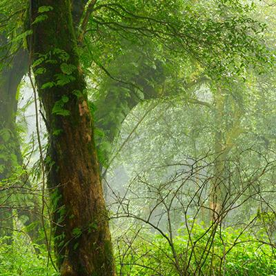amanecer en la Sierra de la Culebra